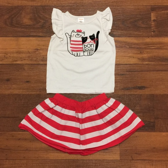 Gymboree Other - Gymboree Girl Cute Outfit Top And Skirt Size 2T